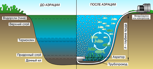 Воздуходувки для аэрации водоёмов